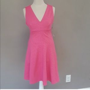 NWT Pink Maggy London Dress